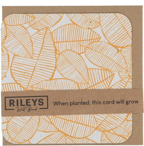 Leaf Pattern Plain Cards Orange