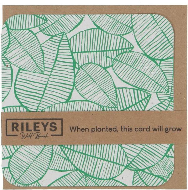 Leaf Pattern Plain Cards Green