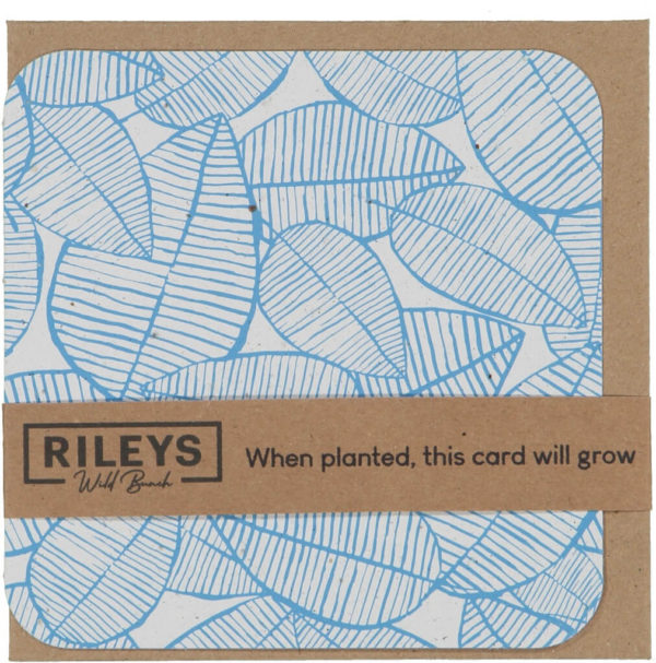 Leaf Pattern Plain Cards Blue