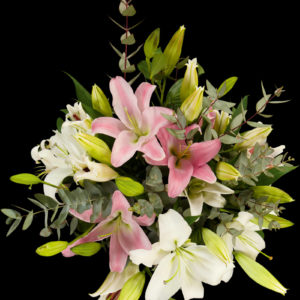 Lillie's of Love